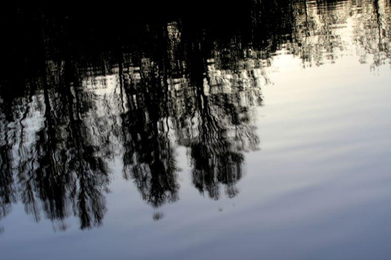 Stillhet vid vatten - reaktionista.se